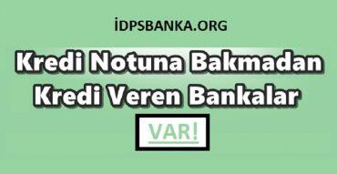kredi botuna bakmadan kredi veren bankalar