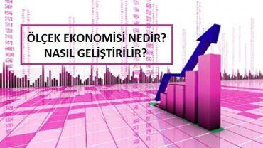 ölçek ekonomisi nedir örneği